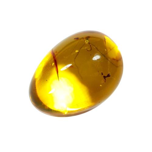 Jor-Specimen-Product 77